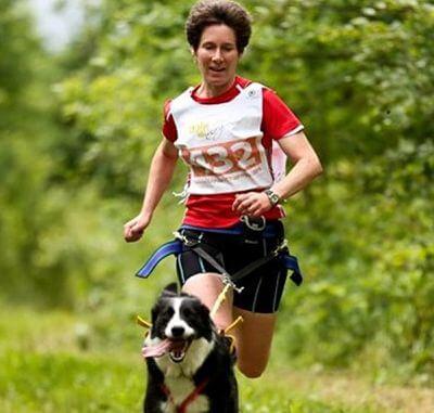 5 comandos que tu perro debe conocer antes de hacer canicross