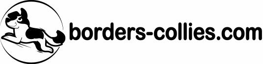 logo borders-collies.com