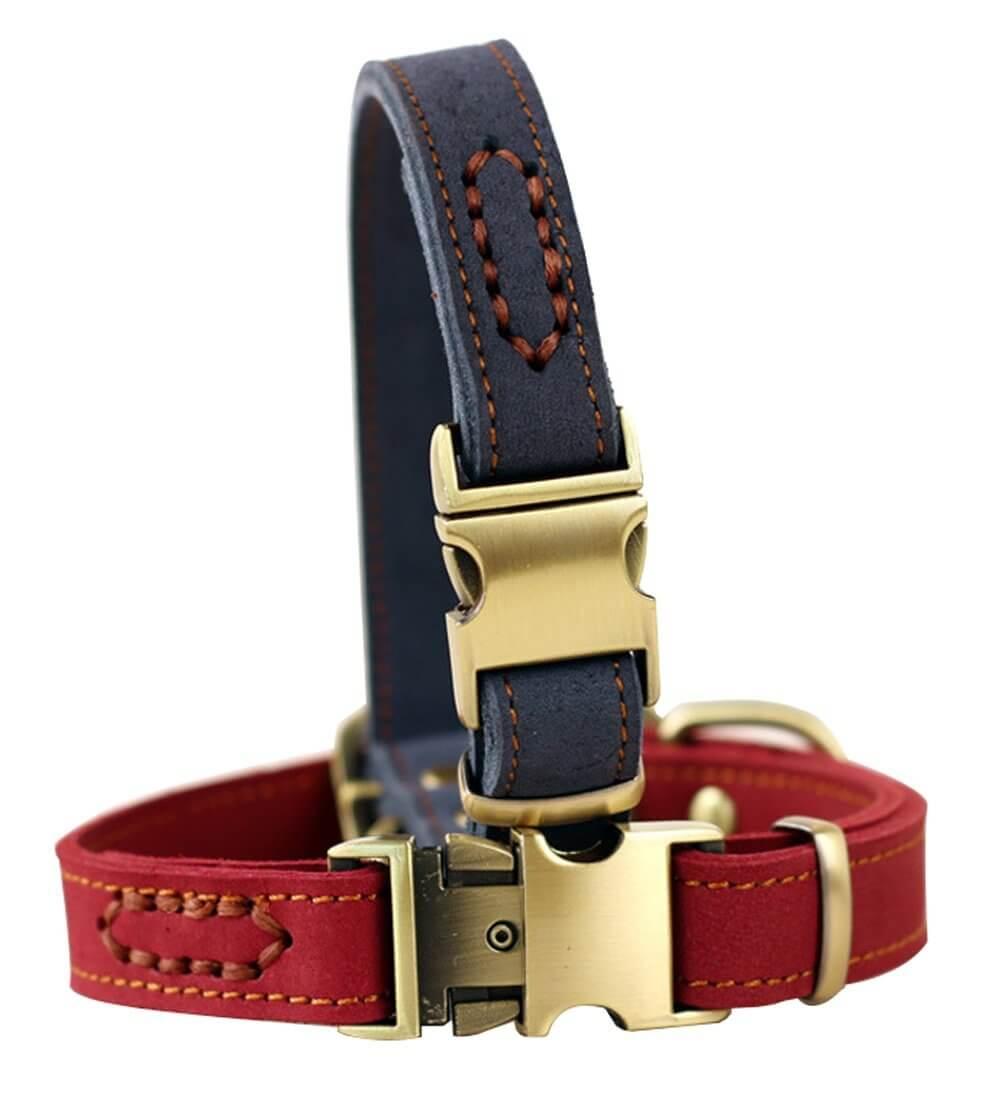 ZEEY Pet Collar de cuero para perros pulido